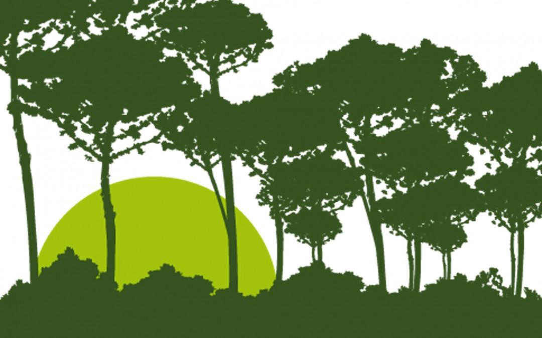 """Próxima promoción en el Pau de Barajas """"Barlovento Green"""""""